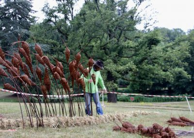Zygodons ©Hugues Seguda (2) - Plantation avec l'aide de Frank